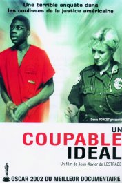 background picture for movie Un coupable ideal