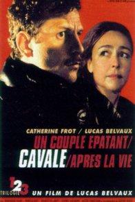 Affiche du film : Cavale