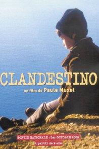 Affiche du film : Clandestino