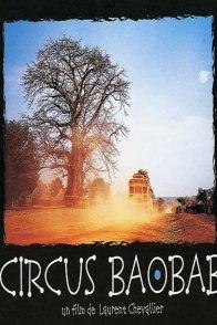 Affiche du film : Circus Baobab
