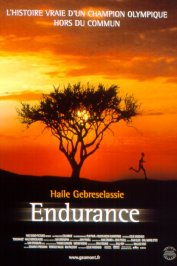 background picture for movie Endurance