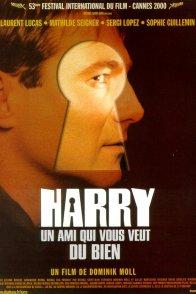 Affiche du film : Harry, Un Ami Qui Vous Veut Du Bien