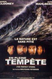 background picture for movie En pleine tempête