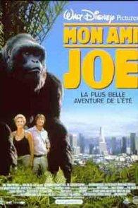 Affiche du film : Mon ami joe