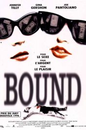 background picture for movie Bound