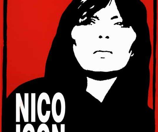 Photo du film : Nico icon