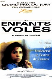background picture for movie Les Enfants volés
