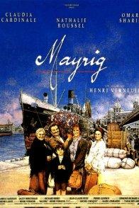 Affiche du film : Mayrig