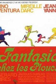 Affiche du film : Fantasia chez les ploucs