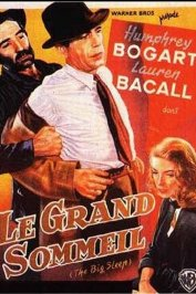 background picture for movie Le grand sommeil