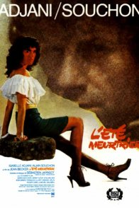 Affiche du film : L'été meurtrier