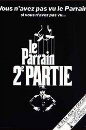 background picture for movie Le Parrain, 2ème partie