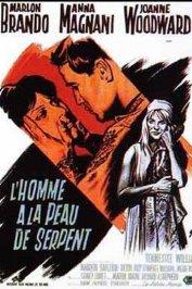 background picture for movie L'homme a la peau de serpent