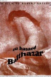 background picture for movie Au hasard balthazar