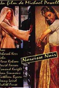Affiche du film : Le narcisse noir