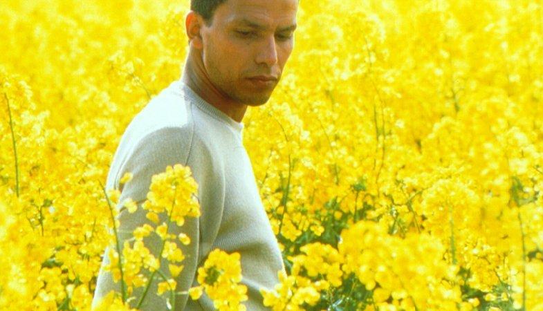 Photo du film : Drôle de Félix