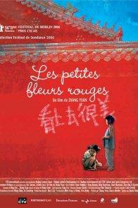 Affiche du film : Les petites fleurs rouges