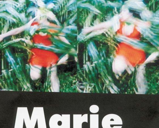Photo du film : Marie et le loup