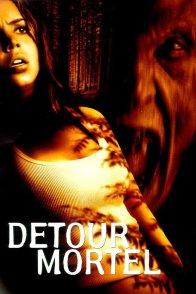 Affiche du film : Detour mortel