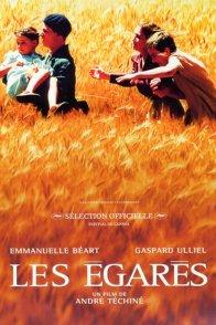 Affiche du film : Les Egarés