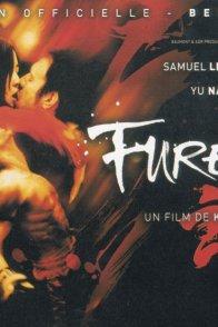 Affiche du film : Fureur