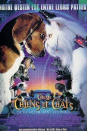 background picture for movie Comme chiens et chats