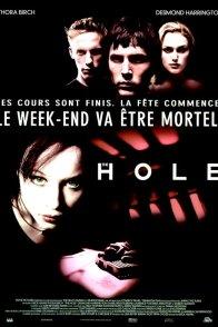 Affiche du film : The Hole