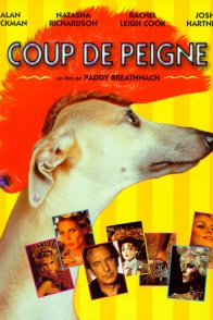 Affiche du film : Coup de peigne