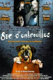 background picture for movie Sac d'embrouilles