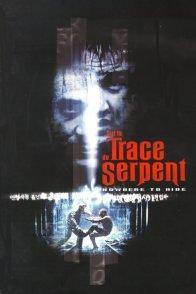 Affiche du film : Sur la trace du serpent