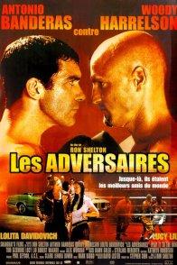 Affiche du film : Les adversaires