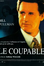 background picture for movie Le coupable