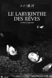background picture for movie Le labyrinthe des reves