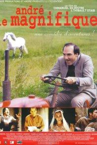 Affiche du film : André le magnifique