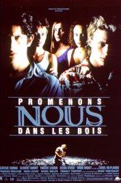 background picture for movie Promenons-nous dans les bois
