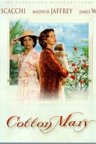 Affiche du film : Cotton mary