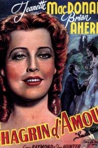 Affiche du film : Chagrin d'amour