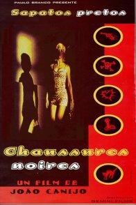 Affiche du film : Chaussures noires