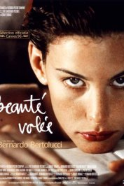 background picture for movie Beauté volée