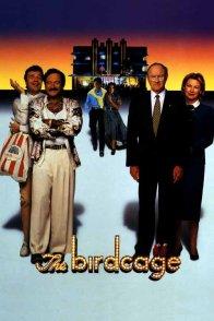 Affiche du film : The birdcage