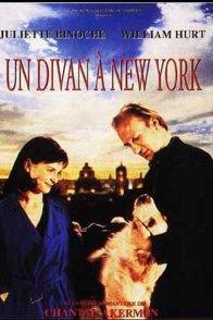 Affiche du film : Un divan à New-York