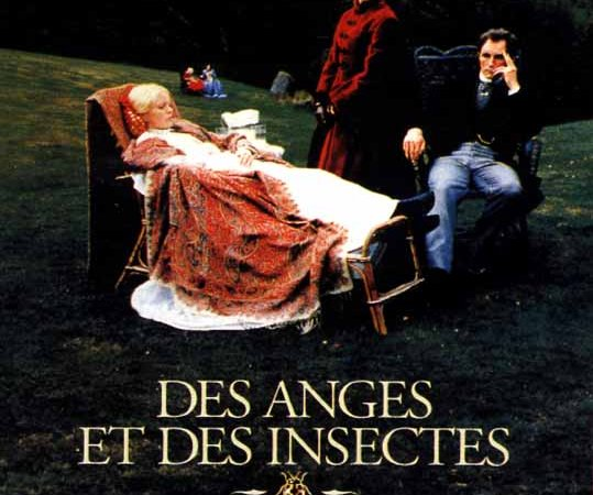Photo du film : Des anges et des insectes