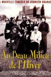 background picture for movie Au beau milieu de l'hiver