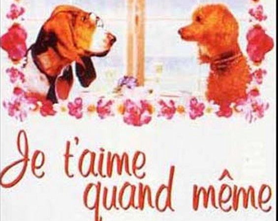 Photo du film : Je t'aime quand meme