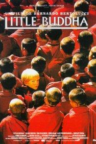 Affiche du film : Little buddha
