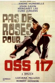 background picture for movie Pas de roses pour OSS 117