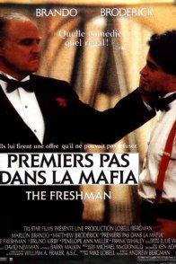 Affiche du film : Premiers pas dans la mafia