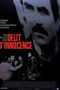 Affiche du film : Délit d'innocence