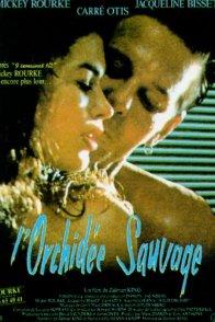 Affiche du film : L'orchidee sauvage