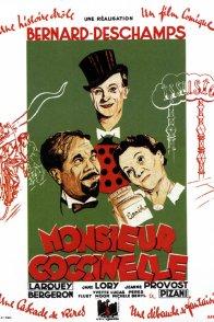 Affiche du film : Monsieur coccinelle